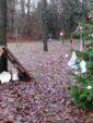 Un arbre de Noël au coeur du quartier