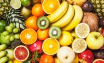 Fruit verzamelen voor kansarme gezinnen