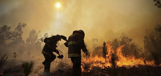 Chile: en medio de los incendios, la solidaridad