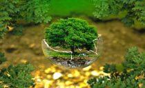 Konbertsio ekologikoko larrialdi handia