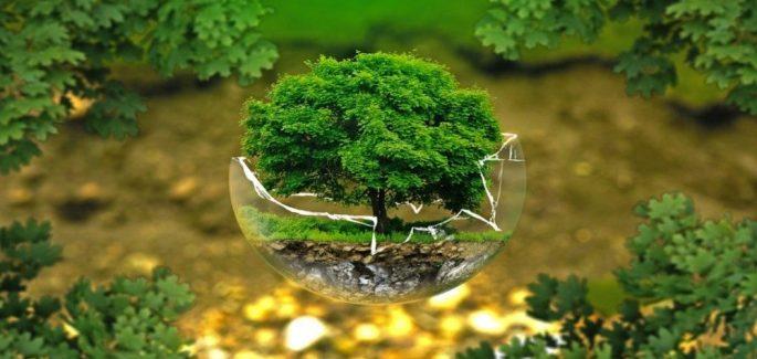 La gran urgencia de una conversión ecológica