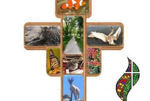Custodios de la biodiversidad