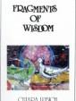Fragments of Wisdom