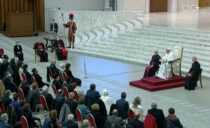 み業の総会の参加者、フランシスコ教皇との謁見