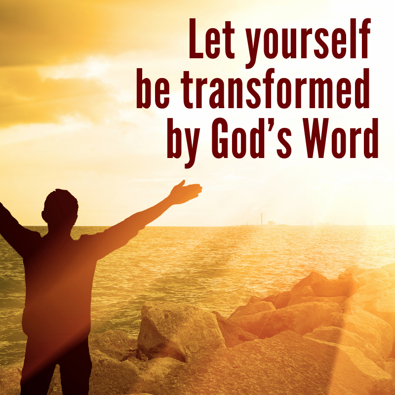 Let yourself be transformed by God's Word | Focolare Movement