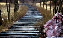 Droga do prawdy, życia i szczęścia