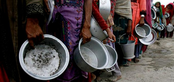 Projekt Zero Głodu