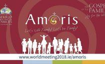 """Konkrety """"Amoris laetitia"""" w Dublinie"""