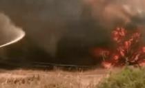 Pożary w Australii: świadectwo