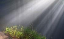 Neka Uskrsnuće postane iskustvo svakog čoveka