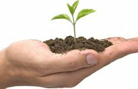 The Mighty Seeds of Generosity