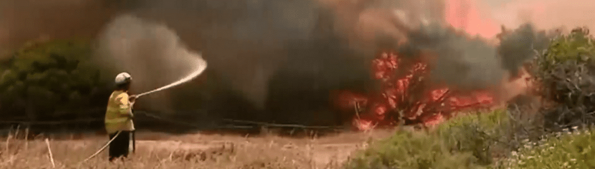 Witnessing the Australia bushfires