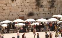 傅瑪利在耶路撒冷希伯來大學