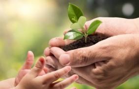 環境與人權