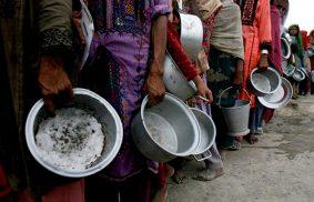 零饑餓計畫